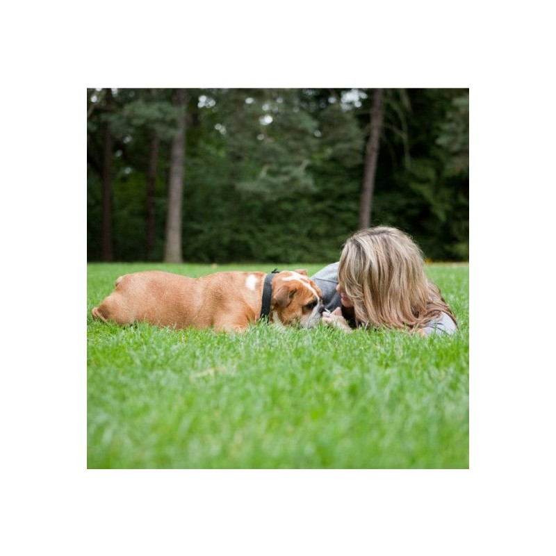 Elektronický obojok PetSafe Little Dog 100m