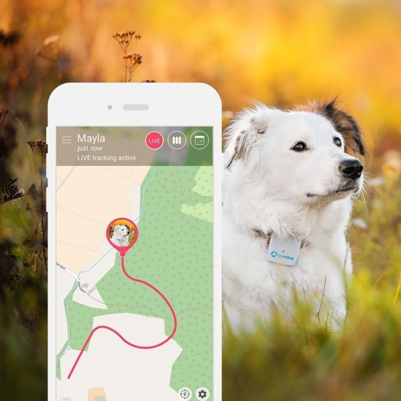 Tractive GPS lokátor pre domácich maznáčikov