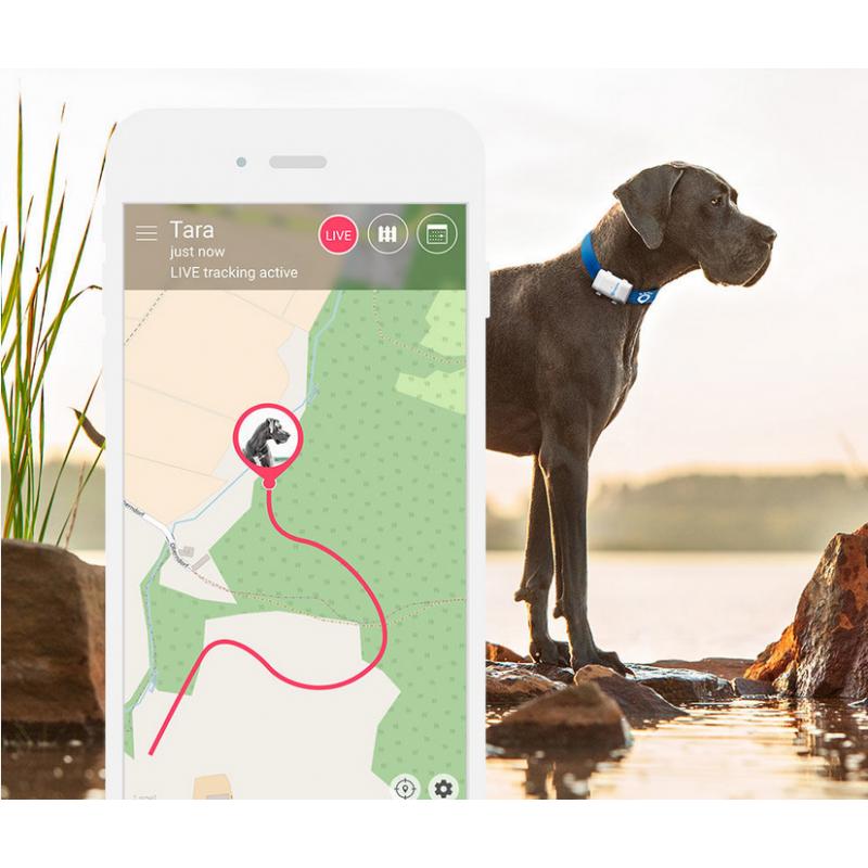 Tractive XL GPS lokátor pre domácich mazlíčkov